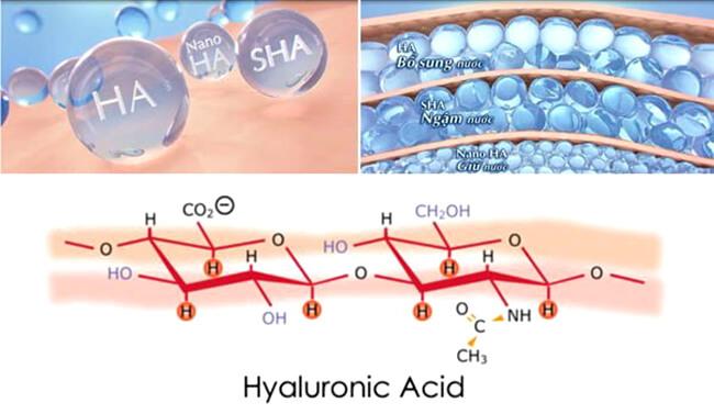 Phân tử nước Hyaluronic Axit luôn cần được bổ sung cho da